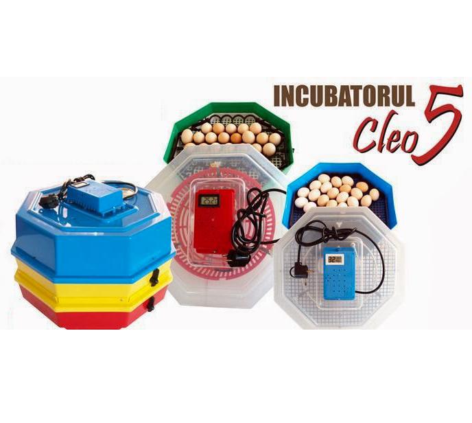 Image of Incubator dublu CLEO 5DT termometru si dispozitiv de intoarcere